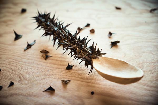 arnoldsche gabi veit creatura geschöpf löffel silber