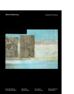 Bente Sætrang Nina M. Schjønsby arnoldsche textil art print colour